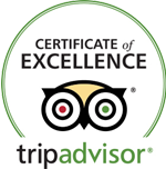 Excelence Trip Advisor